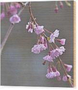 Crepe Myrtle Wood Print