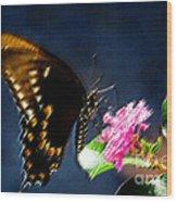 Crepe Myrtle Visitor Wood Print