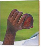 Cricket Anyone Wood Print
