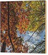 Crimson And Gold Wood Print