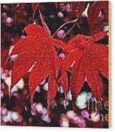 Crimson Beauty Wood Print