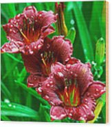 Crimson Lilies In April Shower Wood Print by Lisa  Spencer