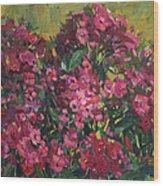 Crimson Phloxes Wood Print