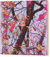 Crisp Autumn Day Wood Print