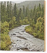Crossing The Stream In Denali Wood Print