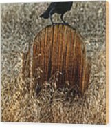 Crow On Old Wooden Grave Wood Print