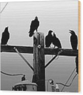 Crows And Insulators On Route 66 Wood Print
