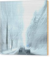 Cruising In A Snowstorm Wood Print
