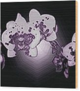 Crystal Butterfly Orchid Wood Print