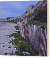 Crystal Cove Beach Wood Print