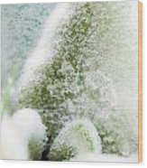 Crystal Palace Wood Print