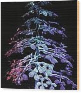 Crystal Tree In Color Wood Print