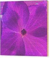 Crystelized Hydrangea Bloom Art Wood Print