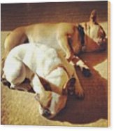 Cuddle Buddies <3 Kirby & Lola Wood Print by Nena Alvarez