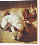 Cuddle Buddies <3 Kirby & Lola Wood Print
