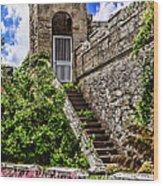 Culzean Castle Wood Print