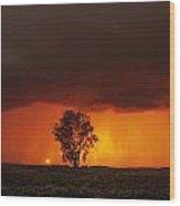 Cumulonimbus Cloud And Cottonwood Tree Wood Print