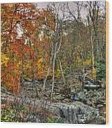 Cunningham Falls Viewing Platforms Wood Print