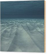 Current-sculpted Ripples In The Sandy Wood Print