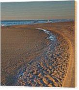 Curving To The Sea I Wood Print