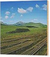 Cut Turf On A Landscape, Connemara Wood Print