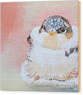 Cute Baby Birdy Wood Print