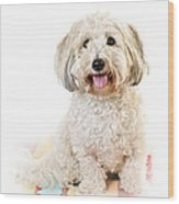 Cute Dog Portrait Wood Print