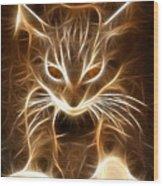 Cute Little Kitten Wood Print