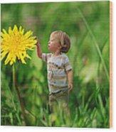 Cute Tiny Boy Playing In The Grass Wood Print by Jaroslaw Grudzinski