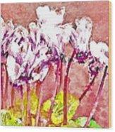Cyclamen Watercolor Wood Print