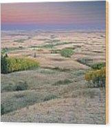 Cypress Hills Interprovincial Park Wood Print