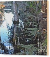 Cypress Knees And Trees Wood Print