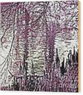 Cypress People Gather Wood Print