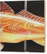 Cypress Red Fish Wood Print by Douglas Snider