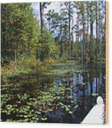 Cypress Swamps And Black Water Wood Print