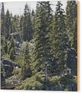 D. L. Bliss State Park Bridge Wood Print
