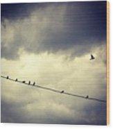 Da Birds Wood Print