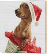 Dachshund Wearing A Santa Hat Wood Print