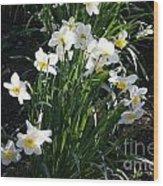 Daffodils Of Suzdal Wood Print
