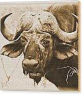 Dagga Boy Wood Print
