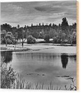D'agostini Lake Wood Print