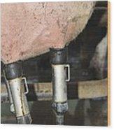 Dairy Farm Wood Print by Photostock-israel