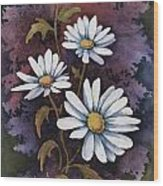 Daisies IIi Wood Print