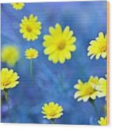 Daisies On Blue Wood Print by Al Hurley