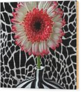 Daisy And Graphic Vase Wood Print