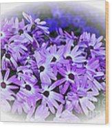 Daisy Garden Vignette Wood Print