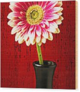 Daisy In Black Vase Wood Print
