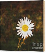 Daisy Is Single But Not Lonely  Wood Print