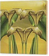 Dance Of The Yellow Calla Lilies Wood Print