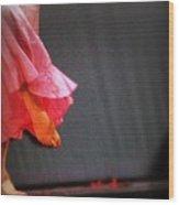 Dancer Foot First Wood Print